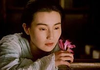 Maggie cheung ashes of time dvd