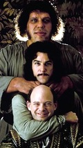 Princess_bride_giant_dvd